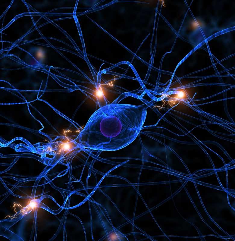 neuronas_terapia-neural